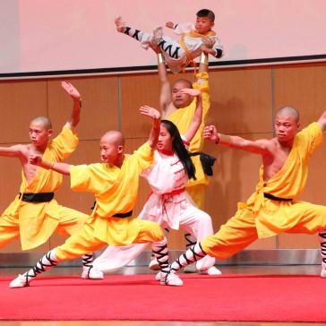 Kungfu Forum